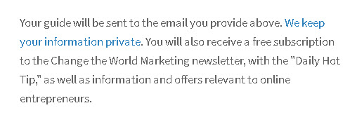 online-business-opt-in-form-1